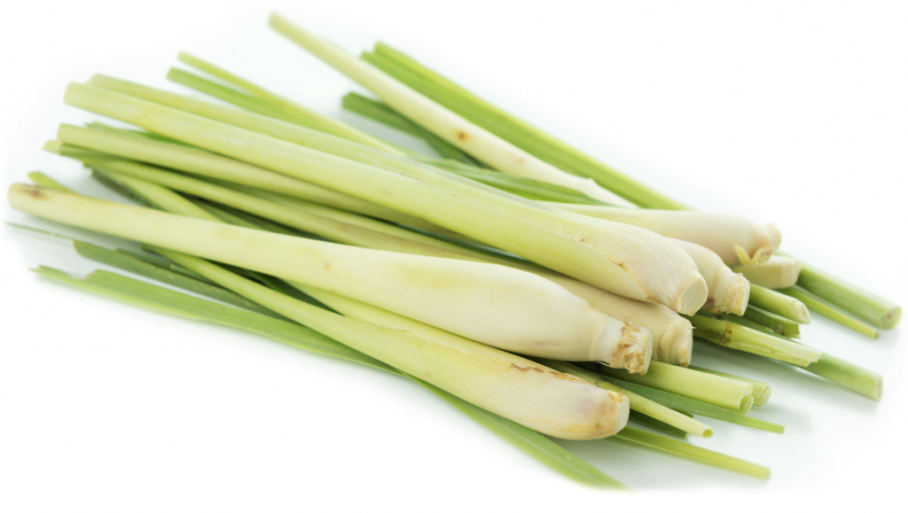 Health-Benefits-of-Lemongrass.jpg